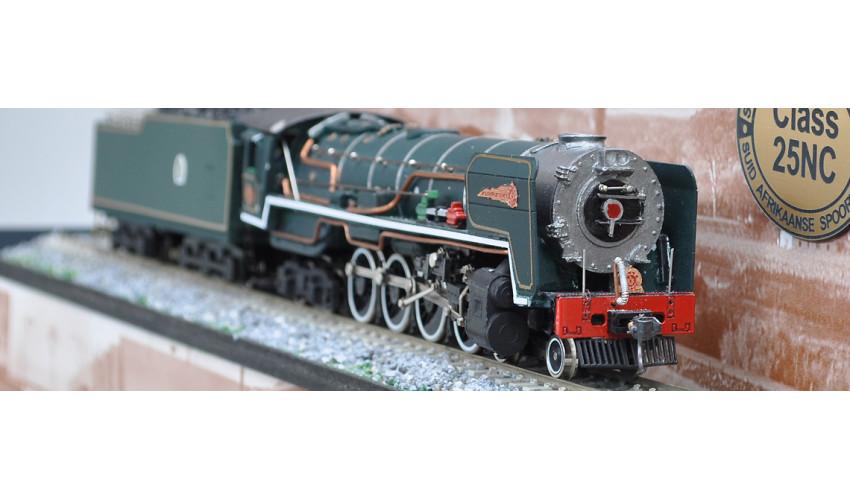 SAR Class 25NC Rovos Rail EW1 Tender